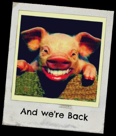 Hogging Up Pig