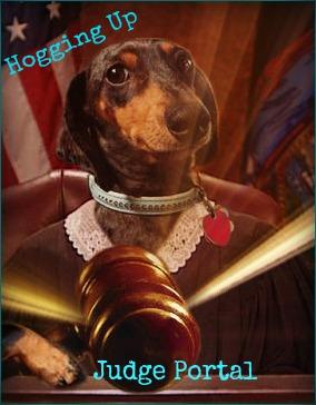 Judge Portal